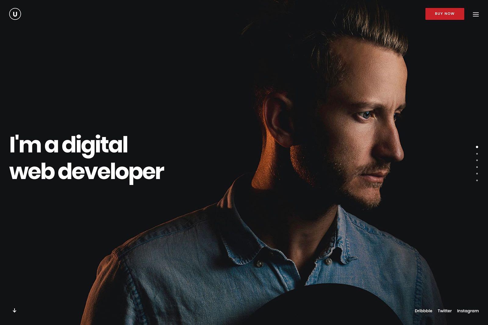 Portfolio Developer